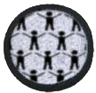 Citizen Science Badge